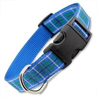 blue plaid dog collar