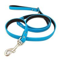 "3/4"" LEASH LEATHER 4' BLUE"
