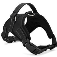 COMFORT CONTROL HARNESS BLACK L